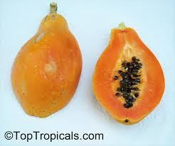 Fresh Papaya red inside